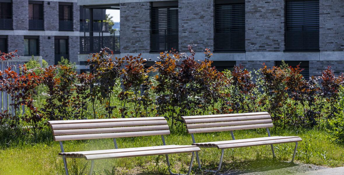 Sitzbänke Wiesendangen